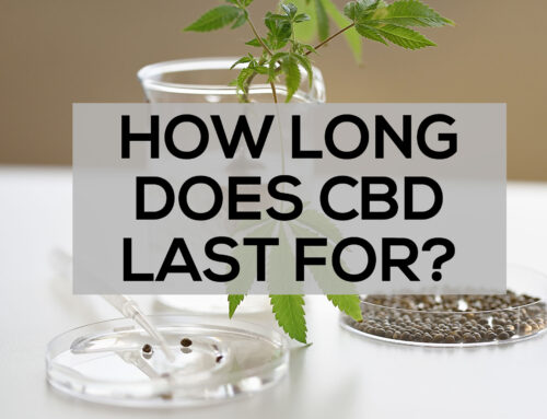 How Long Does CBD Last For?