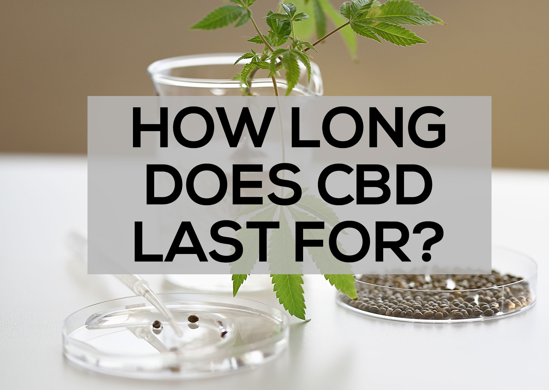 how-long-does-cbd-last-for